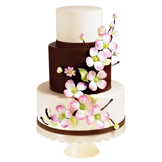 Prime Highly Sophisticated Cake Designs Funny Birthday Cards Online Bapapcheapnameinfo
