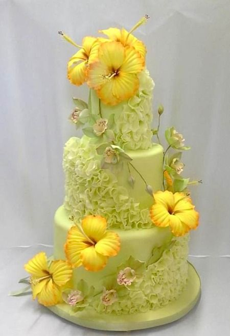 Hibiscus Flower Cake Amazing Cake Ideas