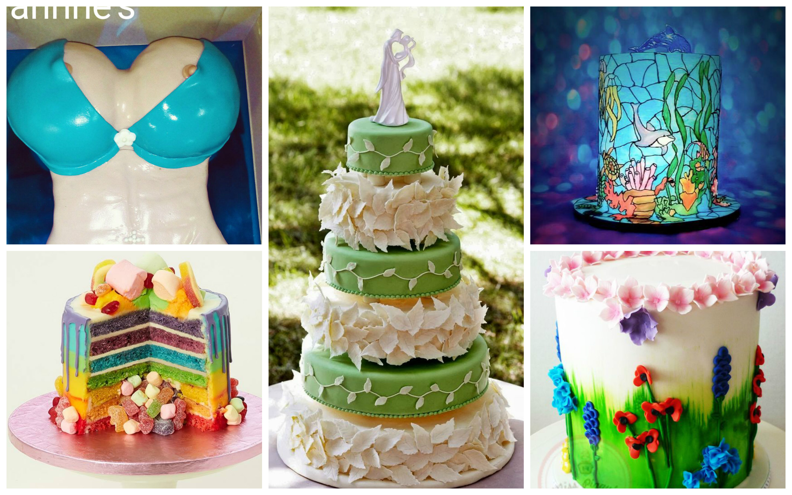 cool cake designs search for the coolest cake designer 3045