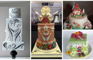 Competition: World's Highly Professional Cake Artist
