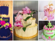 Vote: Worlds Invincible Cake Artist