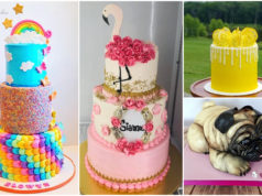 Vote: Artist of the Worlds Nicest Cakes